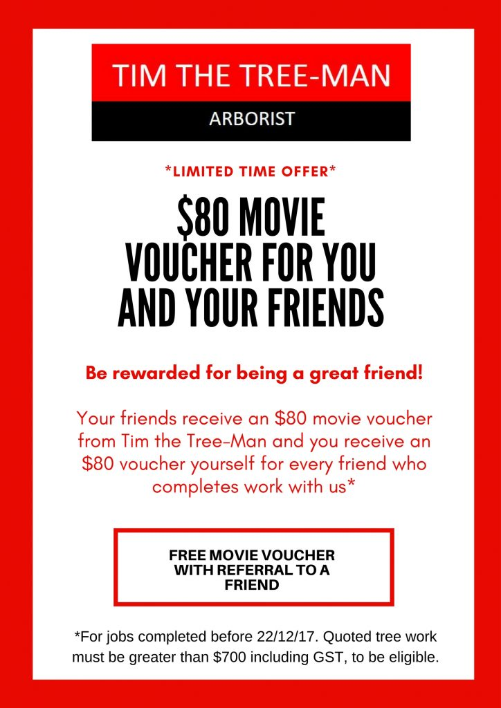 Movie Voucher